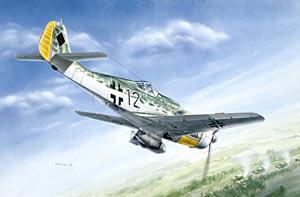 Модель Фокке - Вульф FW - 190D-9